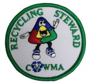 Scout Badge Criteria Final